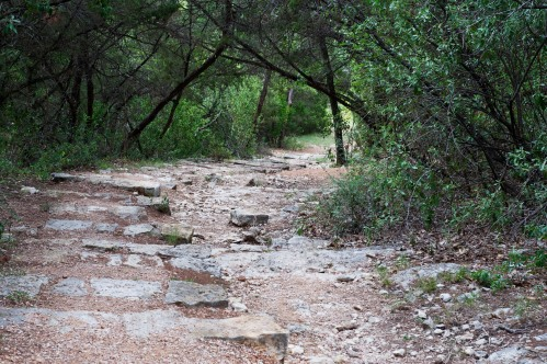 Trail at Allen Memorial Park in Austin, Texas